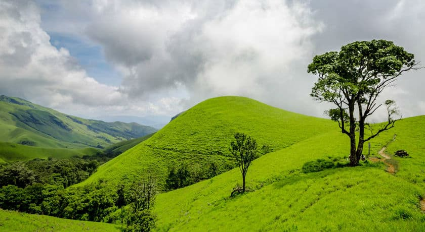 Chikkamagaluru Lifts Travel Ban; Opens its Doors for All