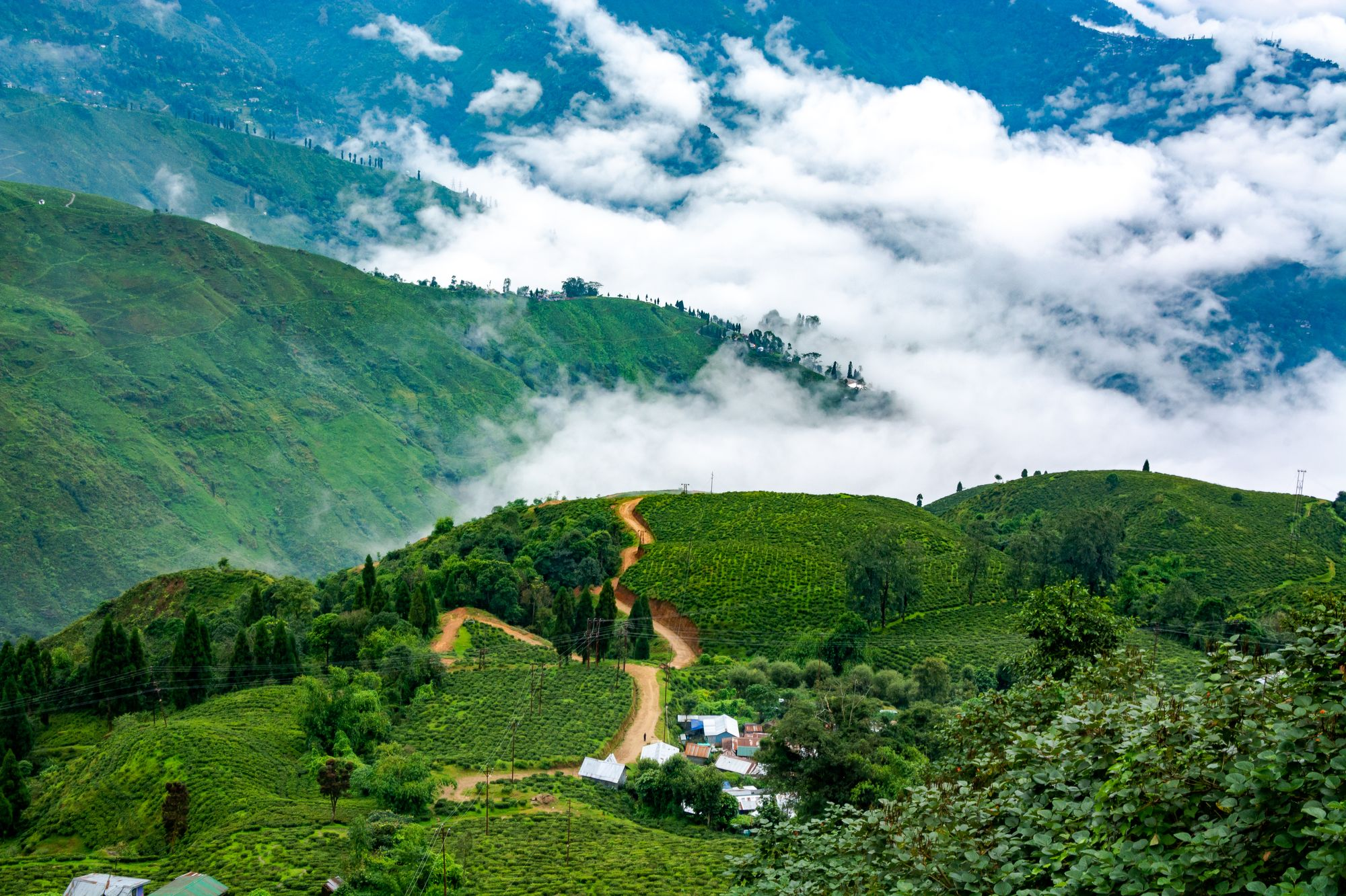 Darjeeling & Kalimpong Open Doors for Tourists