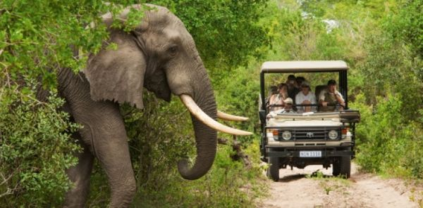 10 African Nations Reopen For International Tourists